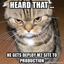 angry cat 2 - heard that ... he gets deploy m2 site to production