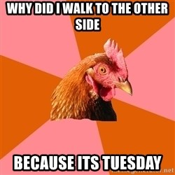 Anti Joke Chicken - Why did I walk to the other side Because its tuesday