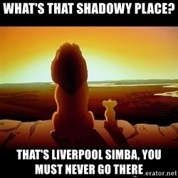 Simba - WHAT'S THAT SHADOWY PLACE? THAT'S LIVERPOOL SIMBA, you must never go there