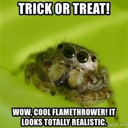 The Spider Bro - Trick or treat! Wow, cool flamethrower! It looks totally realistic.