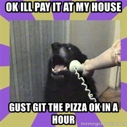Yes, this is dog! - ok ill pay it at my house gust git the pizza ok in a hour