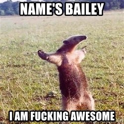 Anteater - NAme's Bailey I am fucking awesome