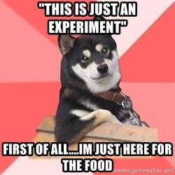 """Cool Dog - """"this is just an experiment"""" first of all....im just here for the food"""