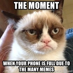 Grumpy Cat 2 - The moment When YOUR phone is full due to the many memes