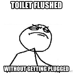 Fuck Yeah - toilet flushed without getting plugged
