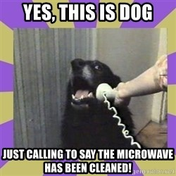 Yes, this is dog! - Yes, this is dog Just calling to say the microwave HAS been cleaned!