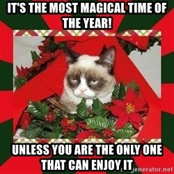 GRUMPY CAT ON CHRISTMAS - It's the most magical time of the Year! Unless you are the only one that can enjoy it