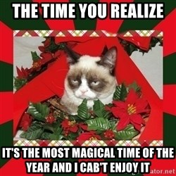 GRUMPY CAT ON CHRISTMAS - The Time you REALIZE  It's the most magical time of the Year and I cab't enjoy it