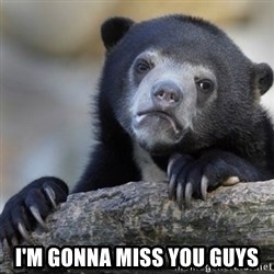 Confession Bear - I'm gonna miss you guys