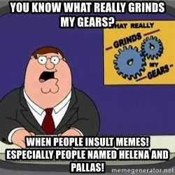 What really grinds my gears - You know what really grinds my gears? When people insult memes! Especially people named helena and pallas!