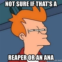 Not sure if troll - not sure if that's a reaper or an ana