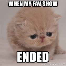 Super Sad Cat - when my fav show ended