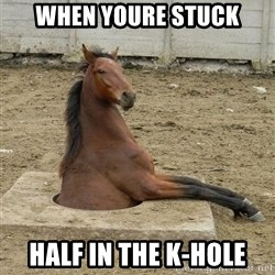 Hole Horse - When youre stuck Half in the K-Hole