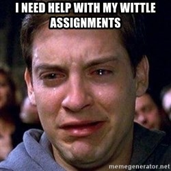 spiderman cry - I need help with my wittle assignments