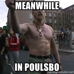 Techno Viking - Meanwhile In Poulsbo