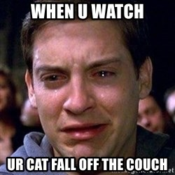 spiderman cry - when u watch ur cat fall off the couch