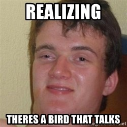 really high guy - Realizing Theres a bird that talks