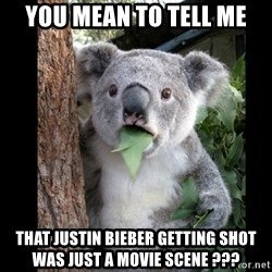 Koala can't believe it - You mean to tell me That justin bieber getting shot was just a movie scene ???