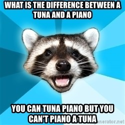Lame Pun Coon - What is the difference between a tuna and a piano you can tuna piano but you can't piano a tuna