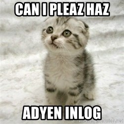 Can haz cat - Can I Pleaz Haz  Adyen inlog