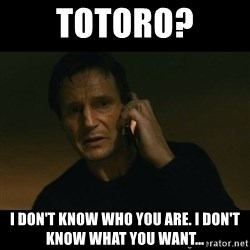 liam neeson taken - Totoro? I don't know who you are. I don't know what you want...