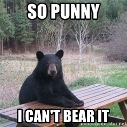 Patient Bear - So Punny I can't bear it