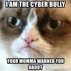 angry cat asshole - I am the Cyber Bully Your momma warned you about