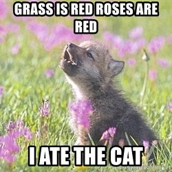 Baby Insanity Wolf - grass is red roses are red i ate the cat