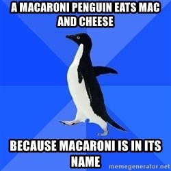 Socially Awkward Penguin - A macaroni penguin eats mac and cheese Because macaroni is in its name