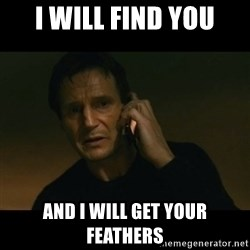 liam neeson taken - I will find you and i will get your feathers