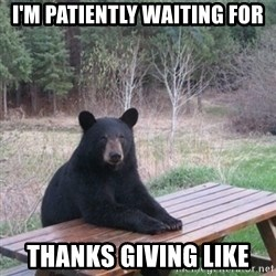 Patient Bear - I'm patiently waiting for Thanks giving like