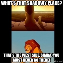 Lion King Shadowy Place - What's that shadowy place? That's the west side, Simba. You must never go there!