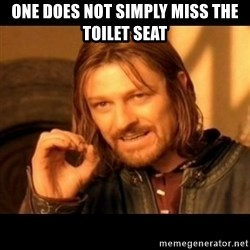 Does not simply walk into mordor Boromir  - ONE DOES NOT SIMPLY MISS THE TOILET SEAT