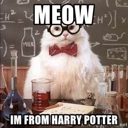 Chemistry Cat - Meow IM from harry potter