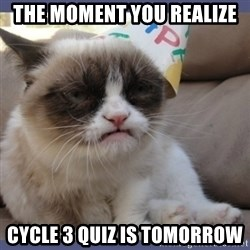 Birthday Grumpy Cat - The moment you realize cycle 3 quiz is tomorrow
