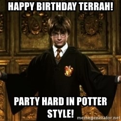 Harry Potter Come At Me Bro - Happy Birthday Terrah! Party hard in potter style!
