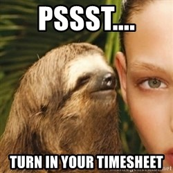 Whisper Sloth - pssst.... turn in your timesheet