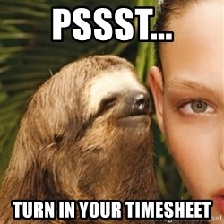 The Rape Sloth - pssst... turn in your timesheet