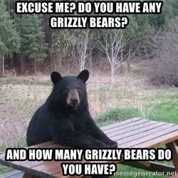 Patient Bear - Excuse me? Do you have any grizzly bears? and how many grizzly bears do you have?