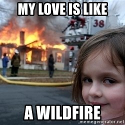 Disaster Girl - my love is like a wildfire