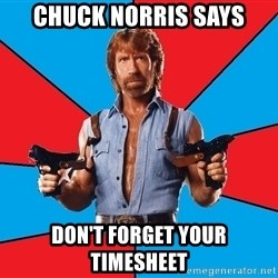 Chuck Norris  - Chuck Norris Says Don't forget your timesheet