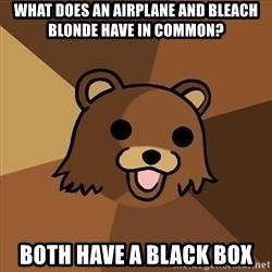 Pedobear - what does an airplane and bleach blonde have in common? Both have a black box