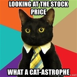 Business Cat - Looking at the stock price What a Cat-astrophe