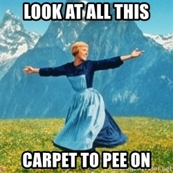 Sound Of Music Lady - Look at all this Carpet to pee on