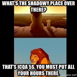 Lion King Shadowy Place - What's the shadowy place over there? That's ICQA 5s. You must put all your hours there.