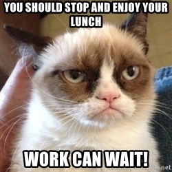Grumpy Cat 2 - you should stop and enjoy your lunch work can wait!
