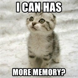 Can haz cat - I CAN HAS MORE MEMORY?