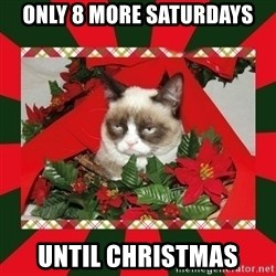 GRUMPY CAT ON CHRISTMAS - Only 8 more saturdays until christmas