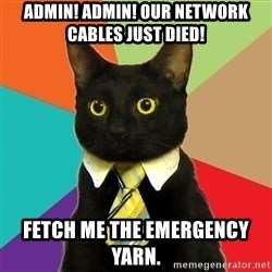 Business Cat - ADMIN! ADMIN! Our network cables just died! fetch me the emergency yarn.