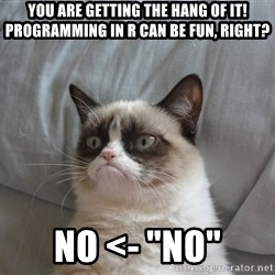 "Grumpy cat 5 - You are getting the hang of it! Programming in R can be fun, right? No <- ""NO"""